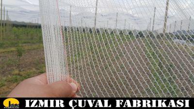 PAİNTBALL FİLESİ